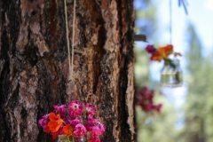 Destination-Wedding-Photography-Misti-Layne_33