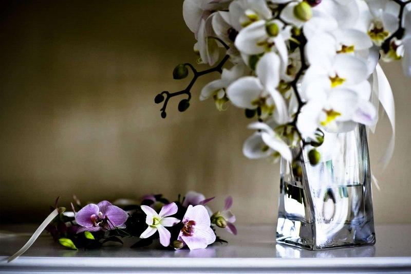 Details-Wedding-Photography-Misti-Layne_05