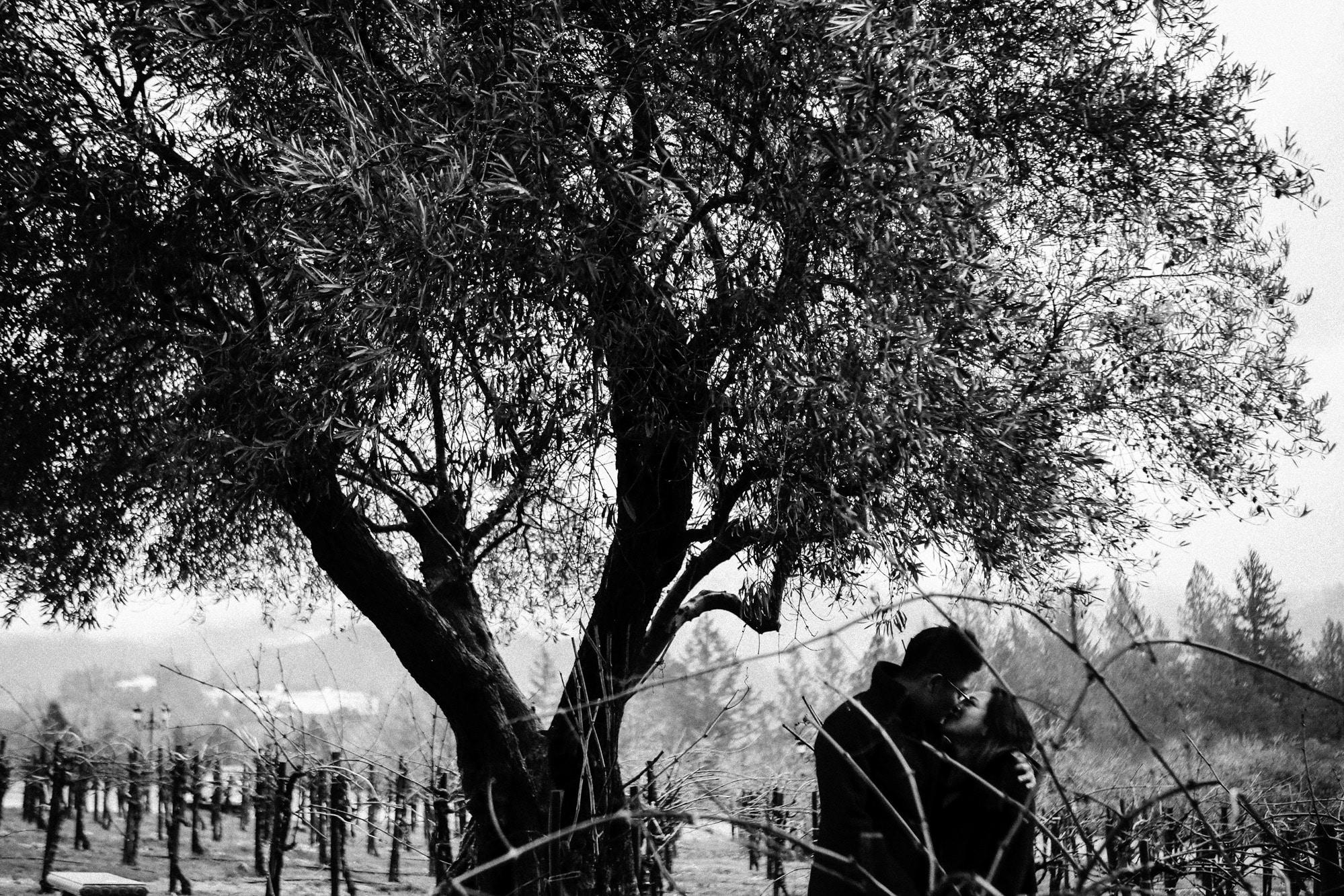 Surprise-Proposal-San-Francisco-Misti-Layne_08