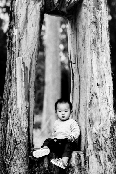 Children-Portraits-San-Francisco-Misti-Layne_23