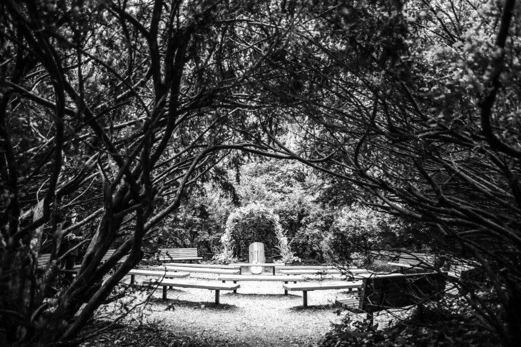 Hoover-Redwood-Grove-Golden-Gate-Park-San-Francisco