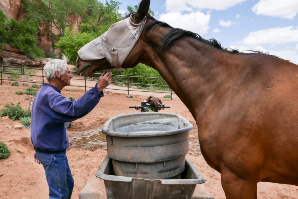 Best Friends Animal Society – Horse Haven