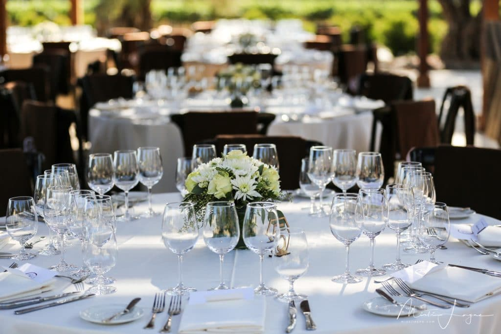 napa corporate event photography Misti Layne