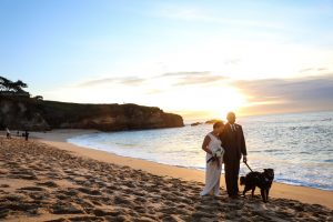 Micro-weddings | Intimate Weddings